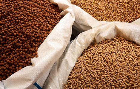 Kim ngạch nhập khẩu TĂCN và nguyên liệu của Việt Nam 8 tháng năm 2017 giảm nhẹ