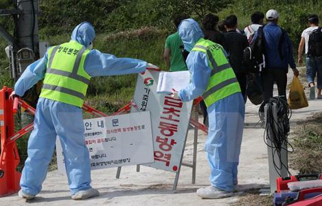 Hàn Quốc phát hiện thêm ít nhất 2 chủng cúm gia cầm có nguy cơ lây nhiễm cao