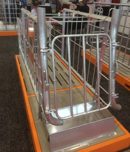 Kỹ thuật thiết kế chuồng nuôi lợn và một số dụng cụ thiết bị cần thiết trong chăn nuôi lợn