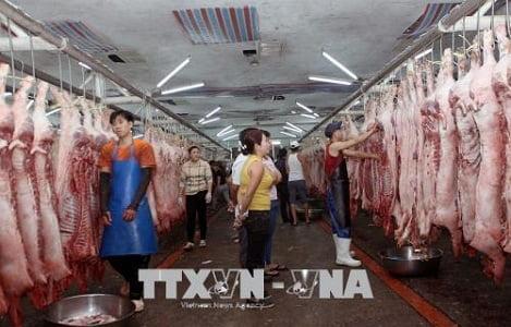 Chợ đầu mối nông sản thực phẩm Tp. Hồ Chí Minh tăng nguồn cung phục vụ Tết