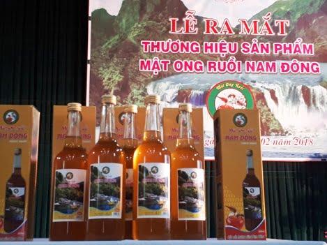 Thừa Thiên Huế: Công bố thương hiệu Mật ong ruồi Nam Đông
