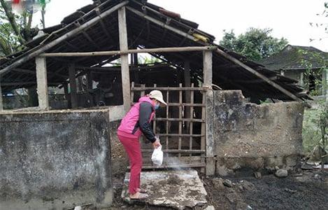 Dịch lở mồm long móng bùng phát ở Triệu Phong (Quảng Trị)