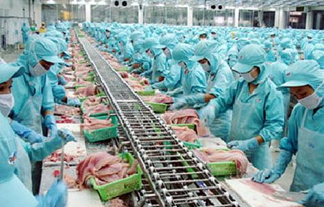 Sản xuất, chế biến thịt, sữa… có lo ngại CPTPP?