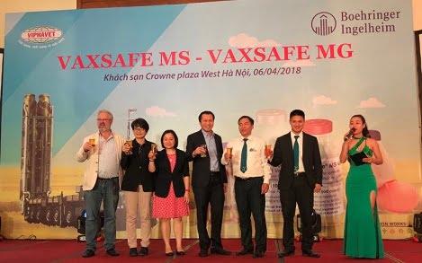 VAXSAFE MG & VAXSAFE MS: Bước đột phá mới trong kiểm soát bệnh Mycoplasma trên gia cầm