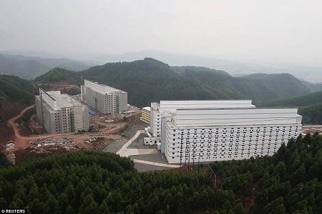 """""""Chung cư"""" cao tầng dành cho lợn ở Trung Quốc"""