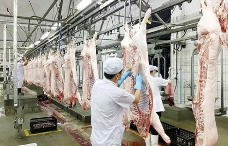 Việt Nam đứng thứ 6 thế giới về sản lượng thịt lợn
