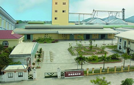 Giá heo tăng mạnh, Dabaco báo lãi gần 93 tỷ trong 6 tháng