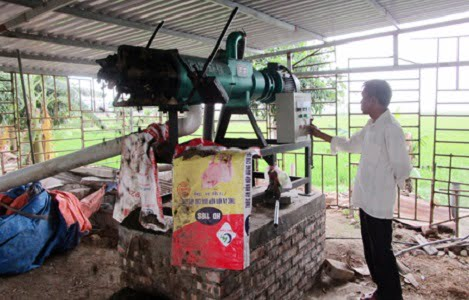 Mô hình 'biến' chất thải chăn nuôi thành… tiền ở Hưng Yên