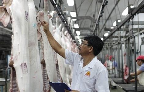 Bảo hộ: Rào cản lớn cho xuất khẩu thịt heo