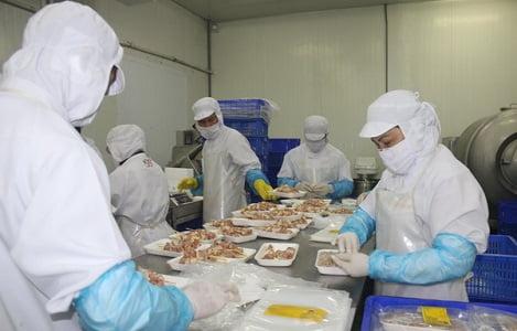 Đồng Nai đi đầu xây dựng vùng an toàn dịch cho xuất khẩu gia cầm
