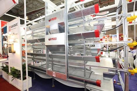 Mở rộng cơ hội xuất khẩu thịt gia cầm Việt Nam ra thế giới