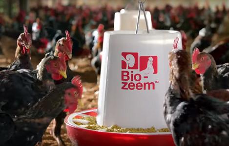 """Thị trường thức ăn chăn nuôi: Khi """"ngoại"""" lấn át """"nội"""""""