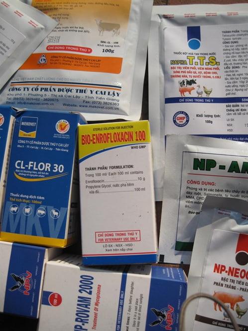 Cảnh báo lạm dụng kháng sinh chăn nuôi