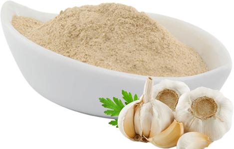 Bột tỏi cải thiện năng suất và chất lượng thịt của con lai ngan vịt