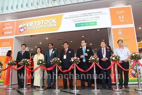 Triển lãm VIETSTOCK 2018 chính thức khai mạc