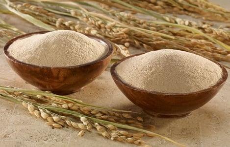 Dầu cám gạo - giải pháp dinh dưỡng và kinh tế cho thức ăn chăn nuôi gà