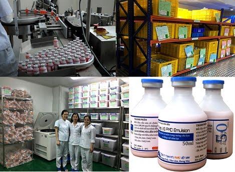 Lần đầu tiên Việt Nam sản xuất thành công vacxin lở mồm long móng