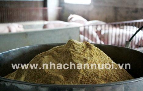 Quản lý sự biến động dinh dưỡng của nguyên liệu trong công thức thức ăn