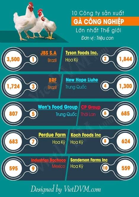 Top 10 công ty sản xuất gà thịt lớn nhất thế giới
