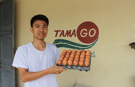 Sản xuất trứng gà sạch, không lo đầu ra