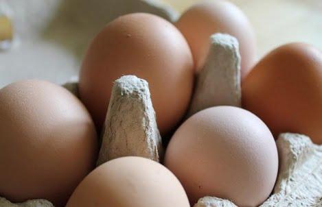 Trứng tươi từ trang trại tới bàn ăn (P1)