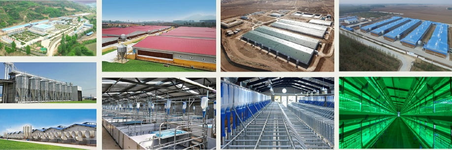 HUALI: Giải pháp hàng đầu cho công trình trang trại và sản xuất thực phẩm