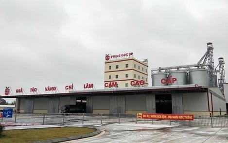 Tập đoàn Twins Trung Quốc: Cần thuê và mua lại nhà máy cám, trại lợn