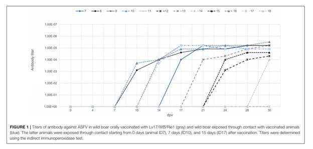 Thử nghiệm vắc xin cho uống đầu tiên trên lợn rừng Á-Âu chống lại virus dịch tả lợn châu Phi Genotype II