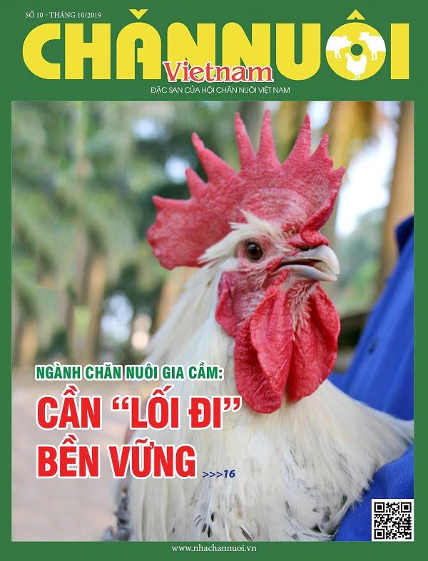 Đón đọc Tạp chí Chăn nuôi Việt Nam số tháng 10.2019