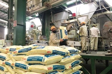 Nhập khẩu thức ăn chăn nuôi và nguyên liệu 10 tháng 2019 giảm 1,93%