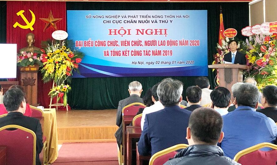 Hà Nội: Tổng đàn gia súc, gia cầm đứng tốp đầu cả nước