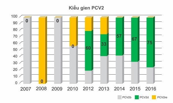 Sự biến đổi của virus PCV2 có phải là nguyên nhân dẫn đến sự thất bại của chủng ngừa?